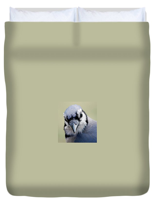 Bird Duvet Cover featuring the photograph Blue Jay by Skip Willits