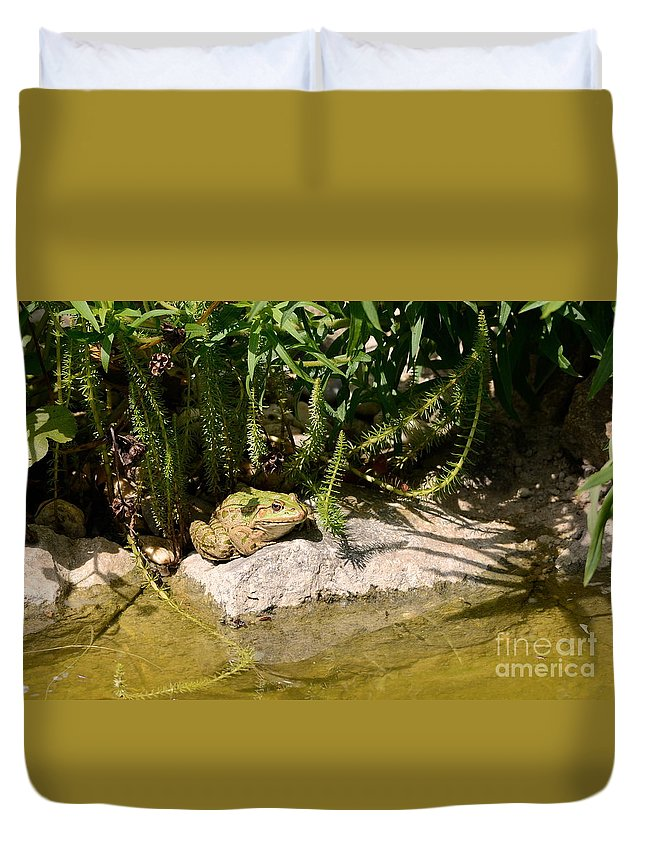 Frog Duvet Cover featuring the photograph Green Frog Sitting At The Pond by Karin Stein