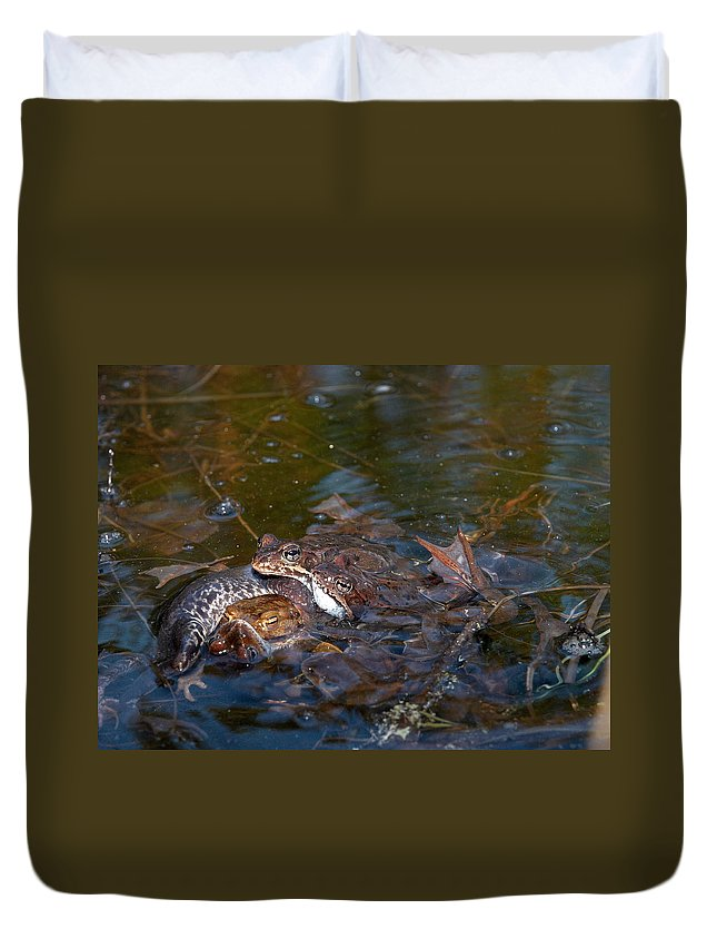Lehtokukka Duvet Cover featuring the photograph Mixed Frogs by Jouko Lehto