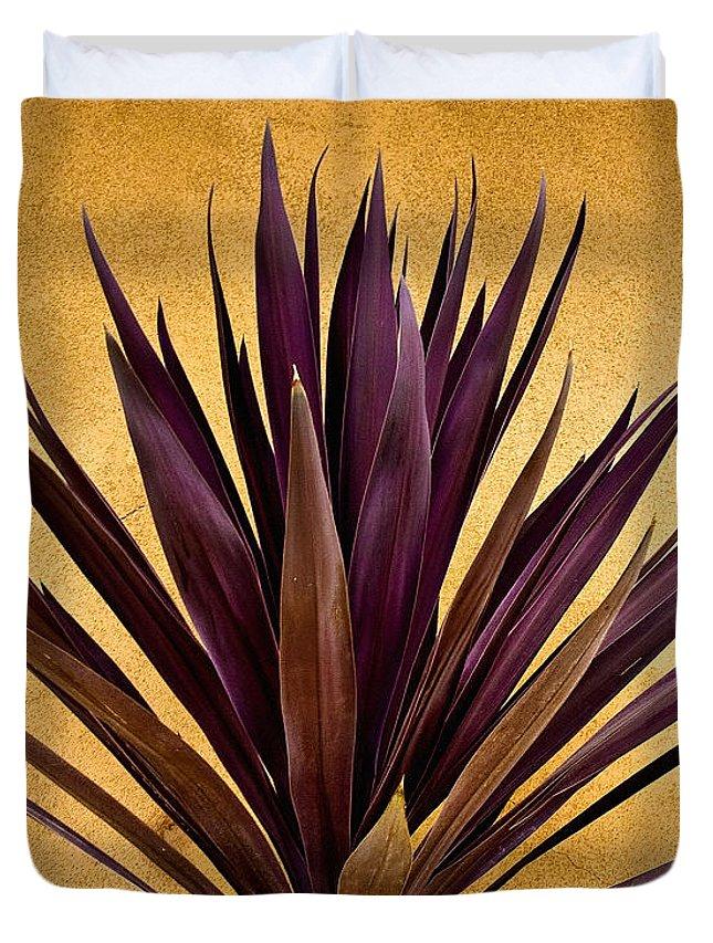 Cacti Photographs Duvet Covers