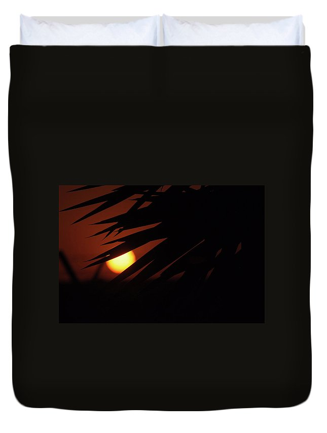 Nature Duvet Cover featuring the photograph Sun Aand Leafs by Cliff Norton