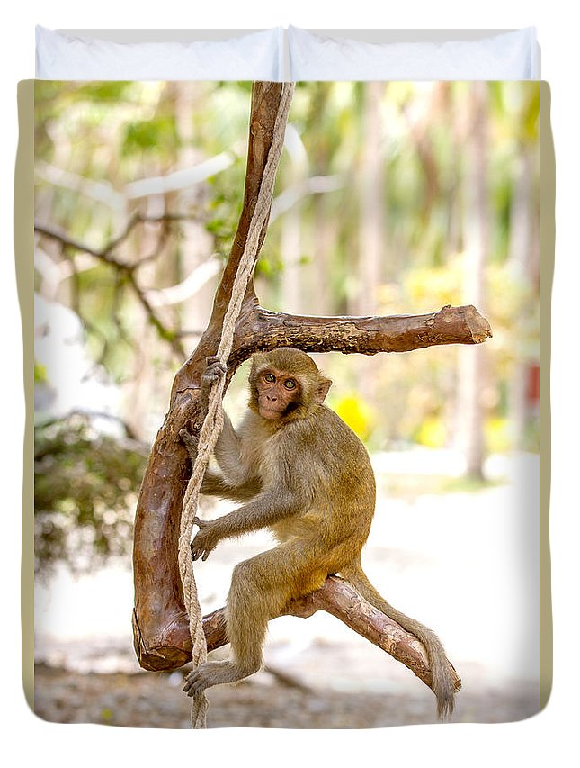 Dara Gor Duvet Cover featuring the photograph Swinging Monkey by Dara Gor