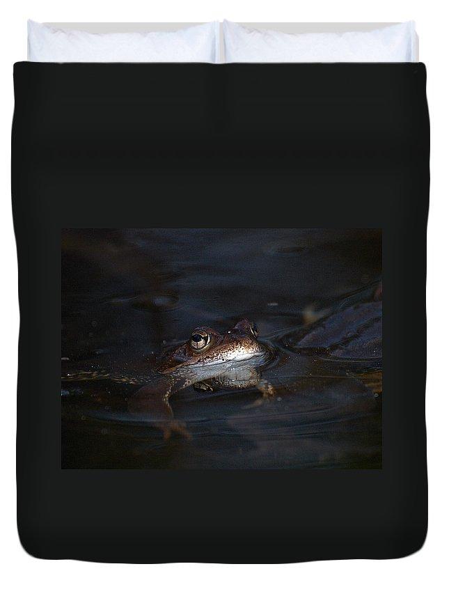 Lehtokukka Duvet Cover featuring the photograph The Common Frog 1 by Jouko Lehto