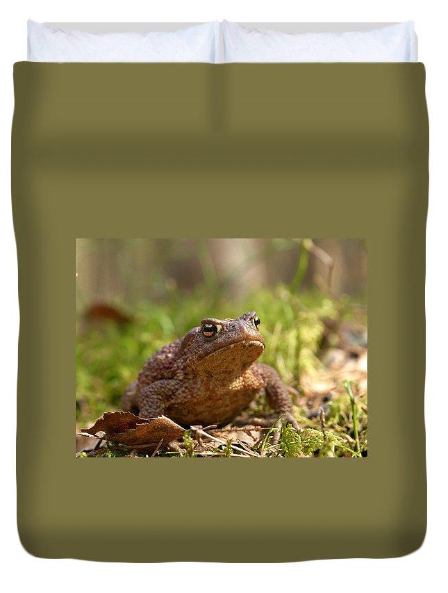 Lehtokukka Duvet Cover featuring the photograph The Common Toad 3 by Jouko Lehto