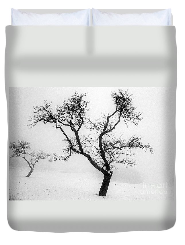 Empty Duvet Cover featuring the photograph Tree In The Snow by Ilan Amihai