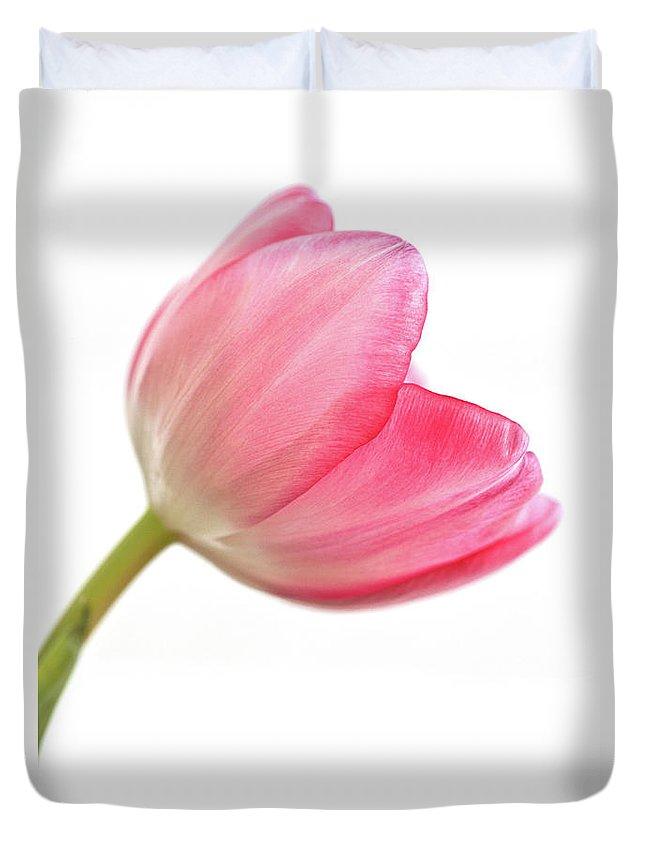 Tulip Acropolis Duvet Cover featuring the photograph Tulip Acropolis by John Edwards