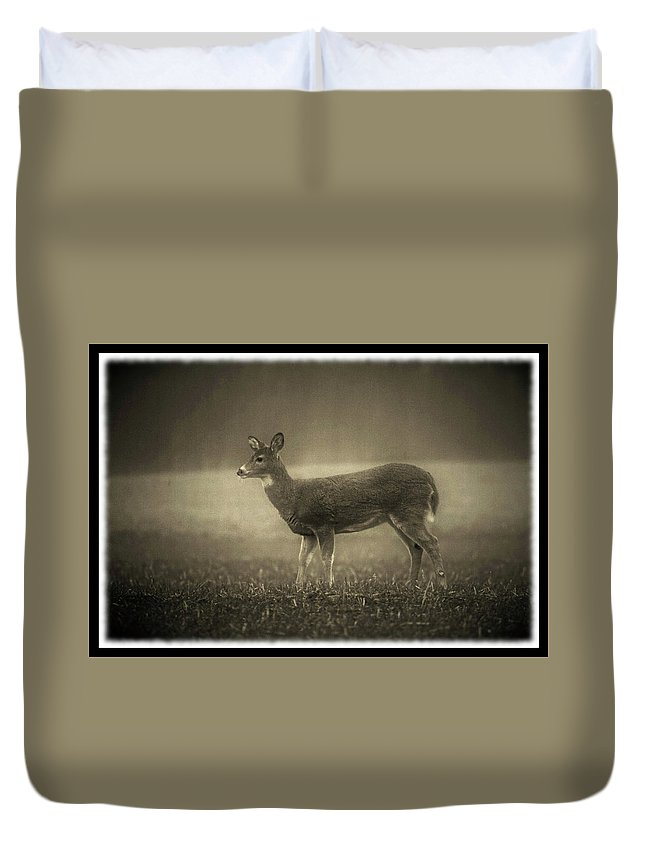 Deer Duvet Cover featuring the photograph 011310-38 by Mike Davis