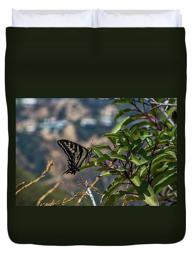 Black Duvet Cover featuring the photograph 0518- Butterfly by David Lange