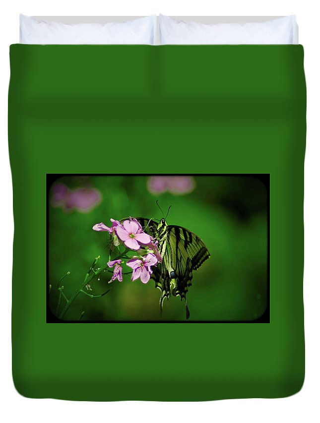 Butterfly Duvet Cover featuring the photograph 060114-3 by Mike Davis