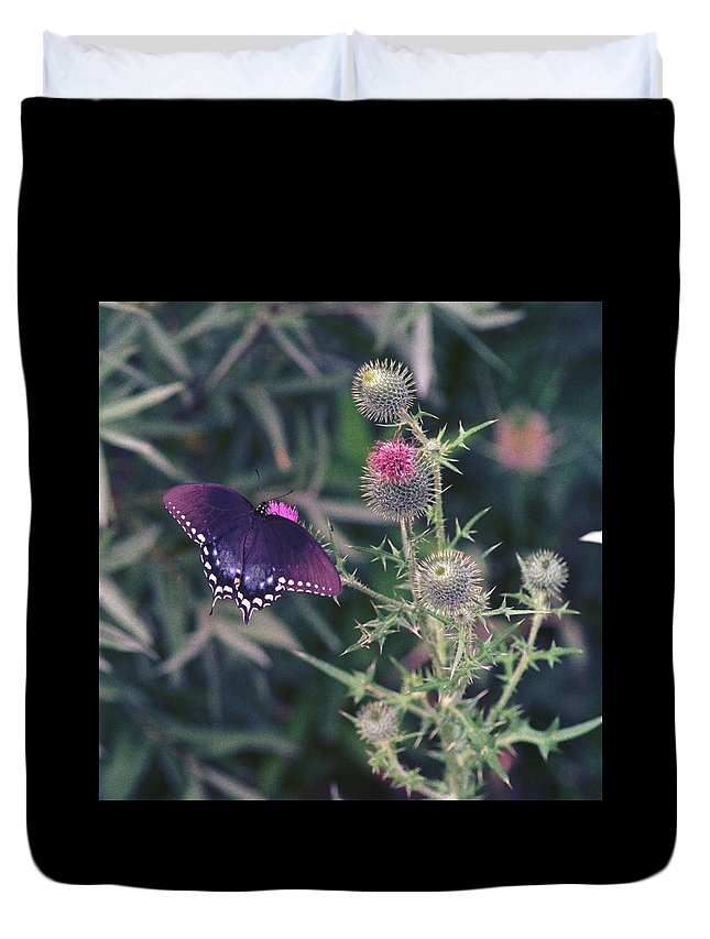 Butterfly Duvet Cover featuring the photograph 060207-13 by Mike Davis