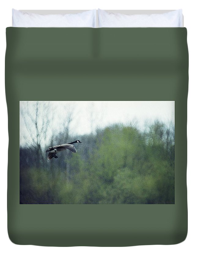 Canada Goose Duvet Cover featuring the photograph 070406-40 by Mike Davis