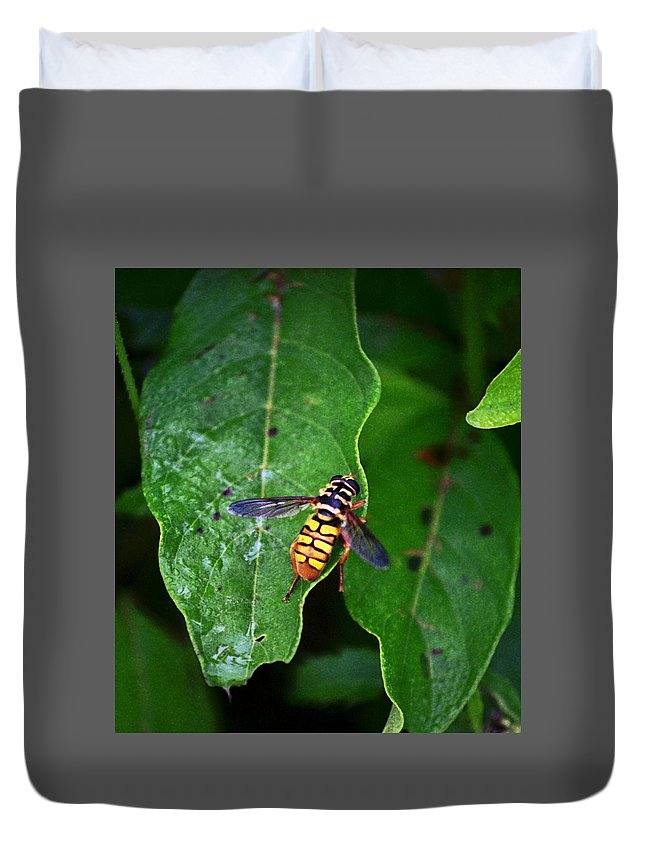 Insect Duvet Cover featuring the photograph 070506-11 by Mike Davis
