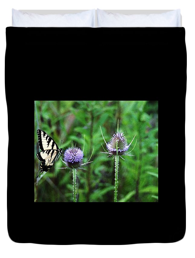 Butterfly Duvet Cover featuring the photograph 072206-2 by Mike Davis