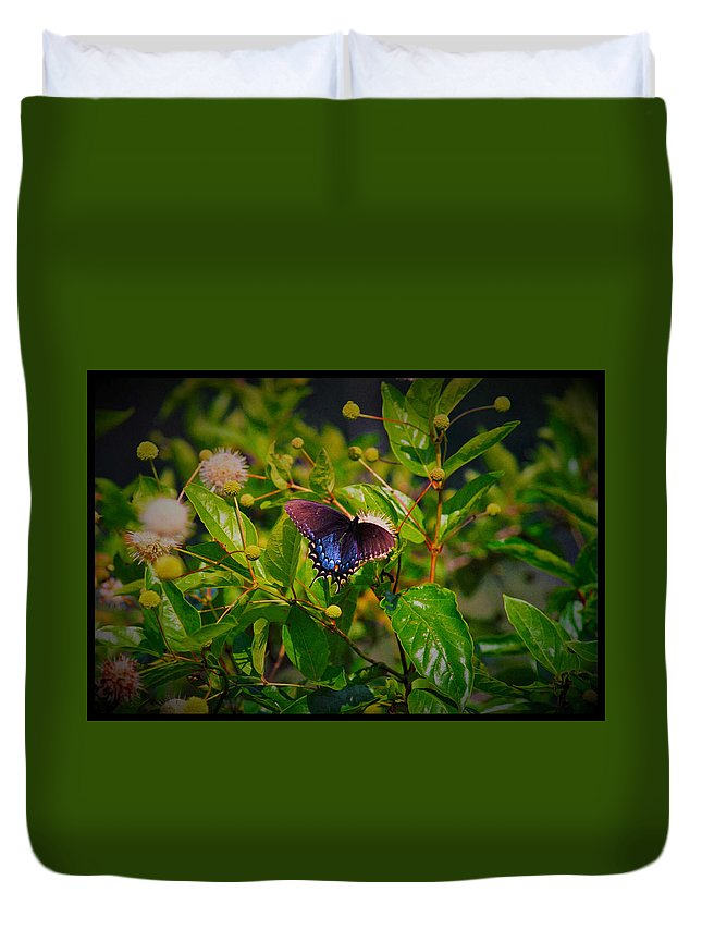 Butterfly Duvet Cover featuring the photograph 080706-6-a by Mike Davis