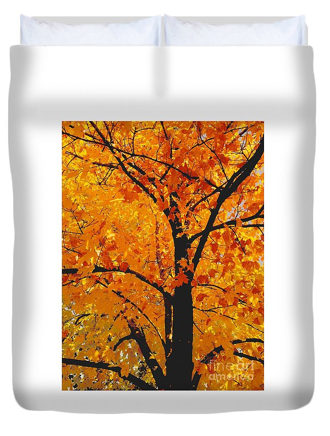 Nature Duvet Cover featuring the photograph 09032015035 by Debbie L Foreman