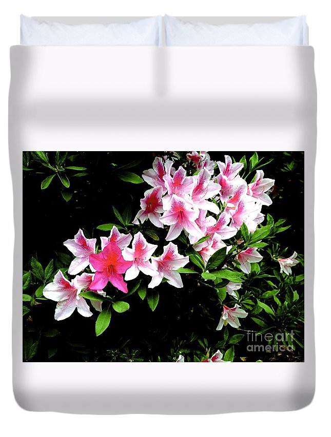 Nature Duvet Cover featuring the photograph 09032015049 by Debbie L Foreman