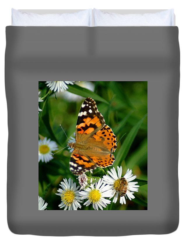 Butterfly Duvet Cover featuring the photograph 092209-133  Seperate Tables by Mike Davis