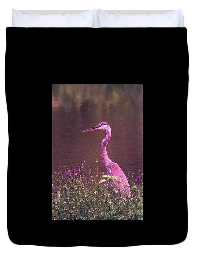 Great Blue Heron Duvet Cover featuring the photograph 080706-12 by Mike Davis