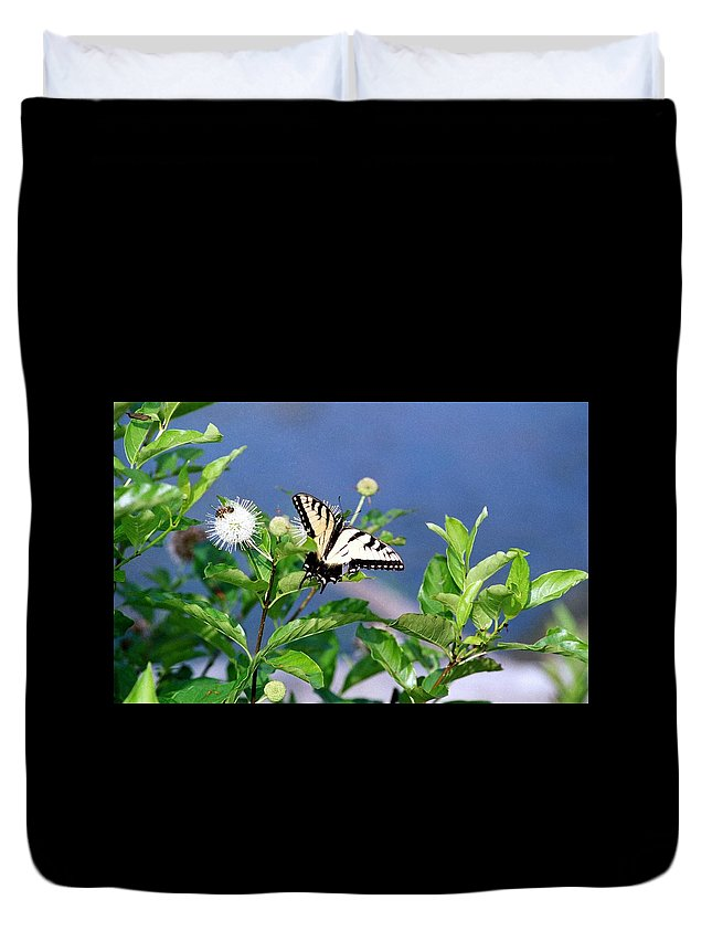 Butterfly Duvet Cover featuring the photograph 080706-7 by Mike Davis