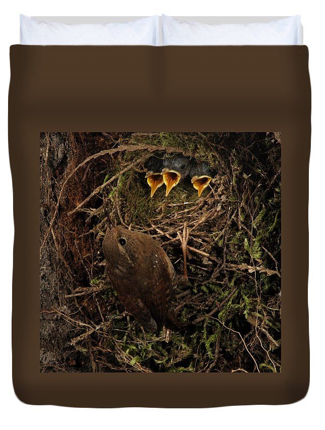Portrait Duvet Cover featuring the photograph A Visit To The Nest by Damon Calderwood