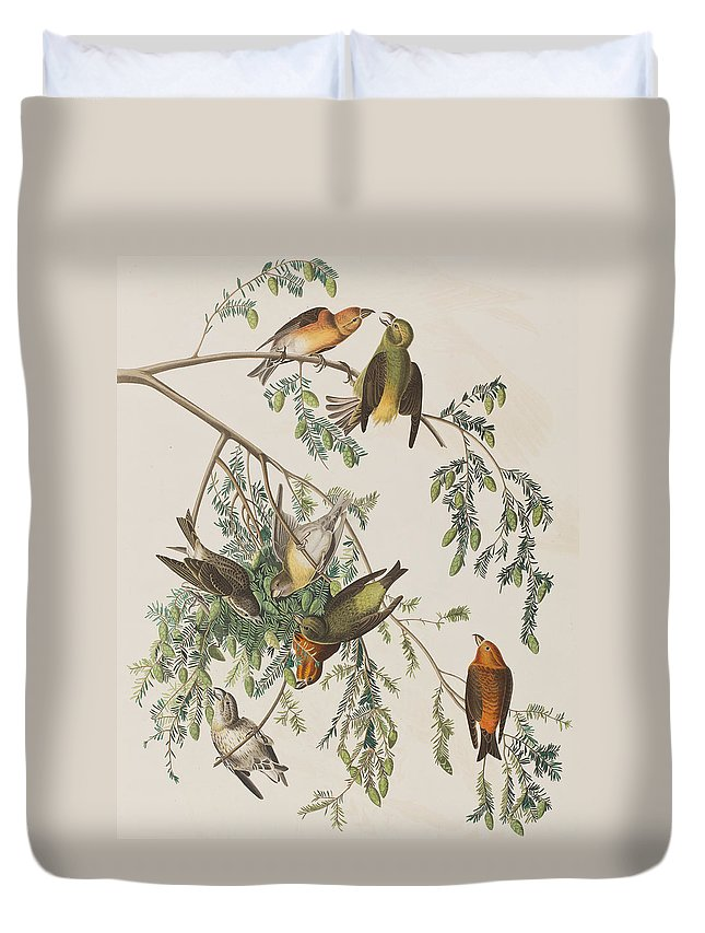 Crossbill Duvet Covers
