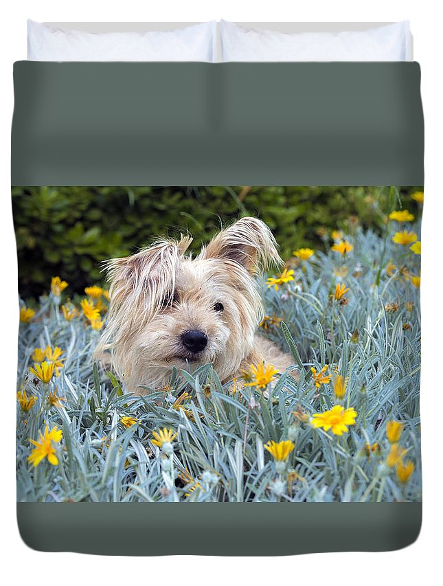 Garden Duvet Cover featuring the photograph Amongst The Flowers by Vicki Vale