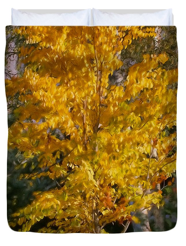 Artistic Duvet Cover featuring the photograph Artistic Fall Colours by Leif Sohlman