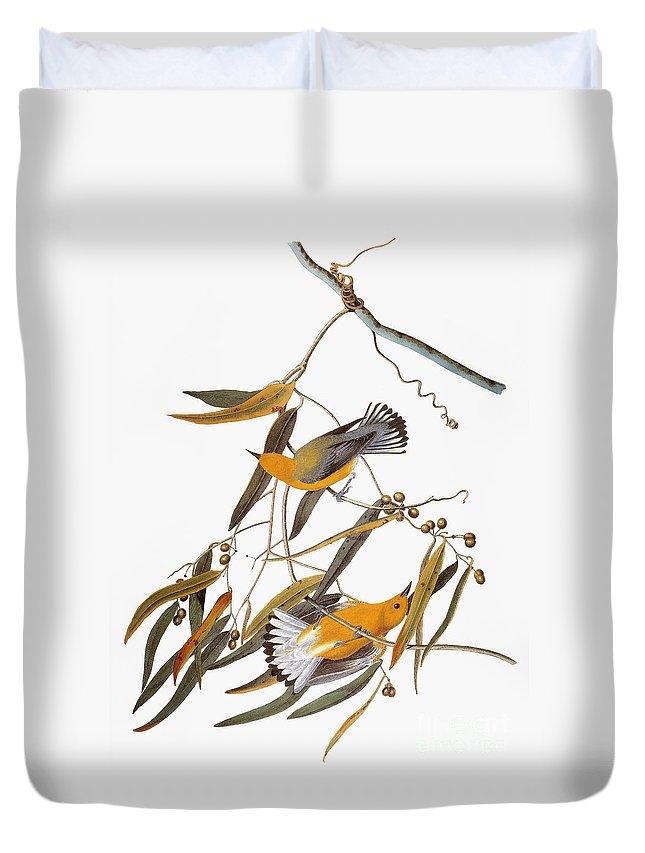 1838 Duvet Cover featuring the photograph Audubon: Warbler by Granger