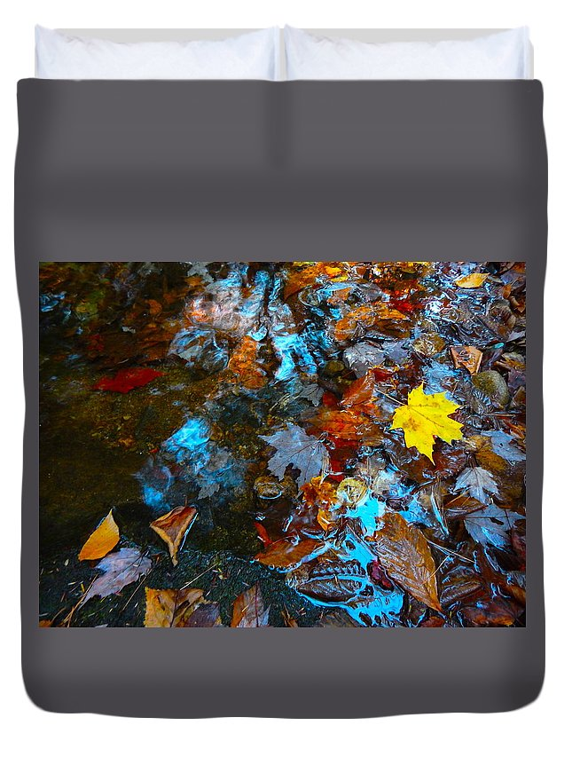 Autumn Landscape Duvet Cover featuring the photograph Autumn B 2015 122 by George Ramos