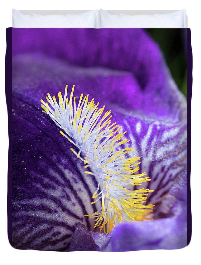 Bearded Iris Duvet Cover featuring the photograph Bearded Iris by Bernard Lynch