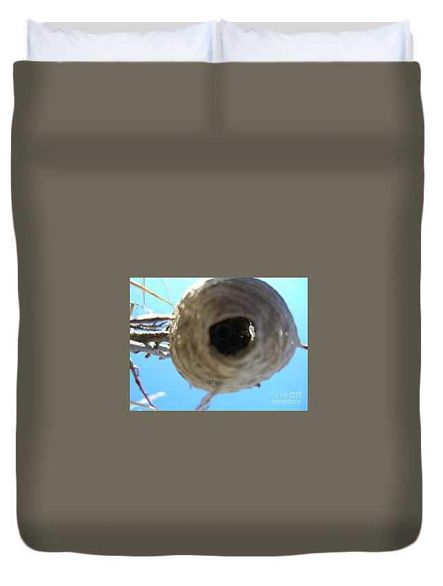 Photograph Bee Hive Blue Sky Branch Insect Duvet Cover featuring the photograph Bee Hive by Seon-Jeong Kim