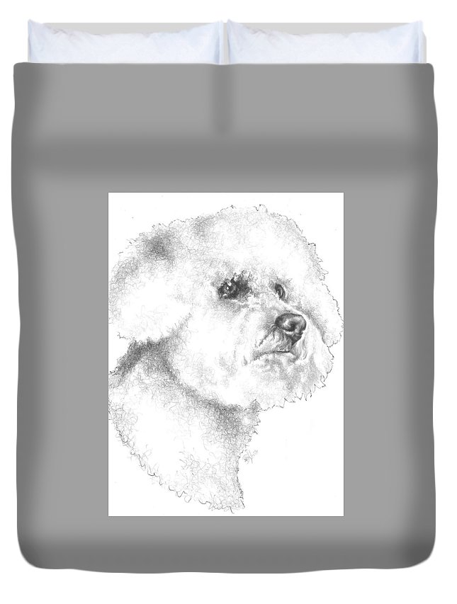Non-sporting Duvet Cover featuring the drawing Bichon Frise In Graphite by Barbara Keith