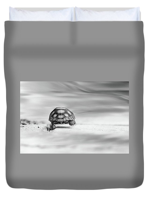 Fairytale Duvet Cover featuring the photograph Big Big World 1 by Laura Fasulo