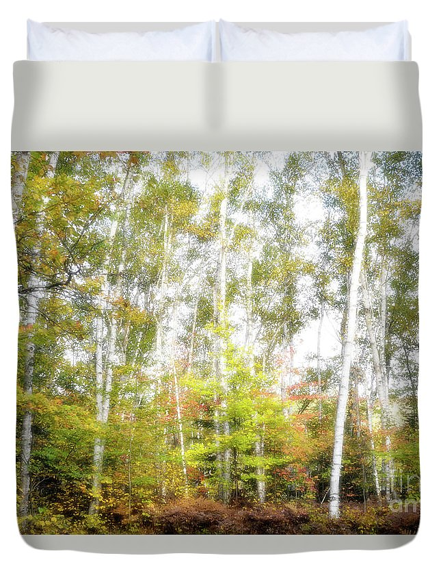 Birches Duvet Cover featuring the photograph Birch Forest by Oleksiy Maksymenko
