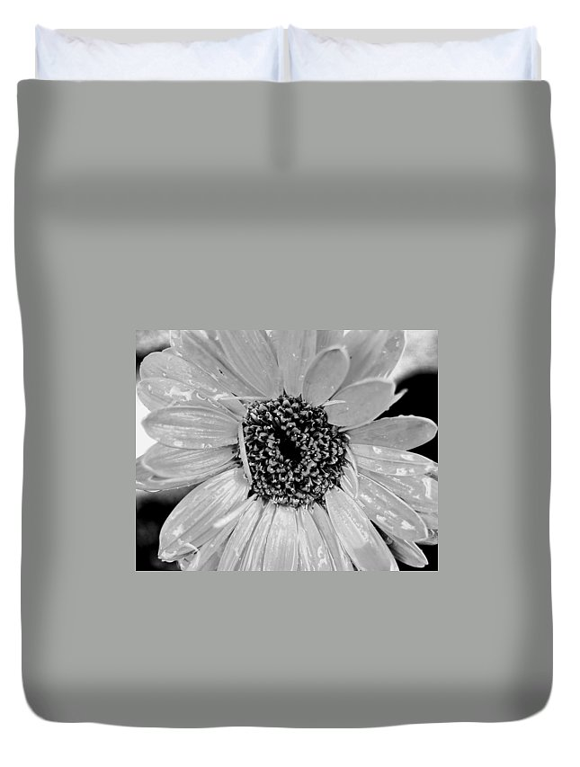 Gerber Daisy Duvet Cover featuring the photograph Black And White Gerbera Daisy by Amy Fose