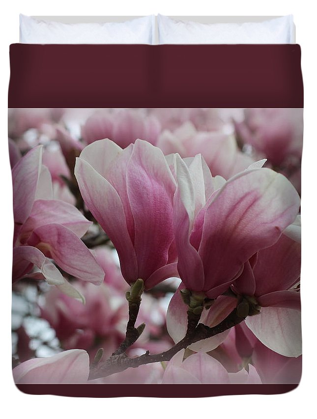 Magnolia Duvet Cover featuring the photograph Blooming Pink Magnolias by Dora Sofia Caputo Photographic Design and Fine Art