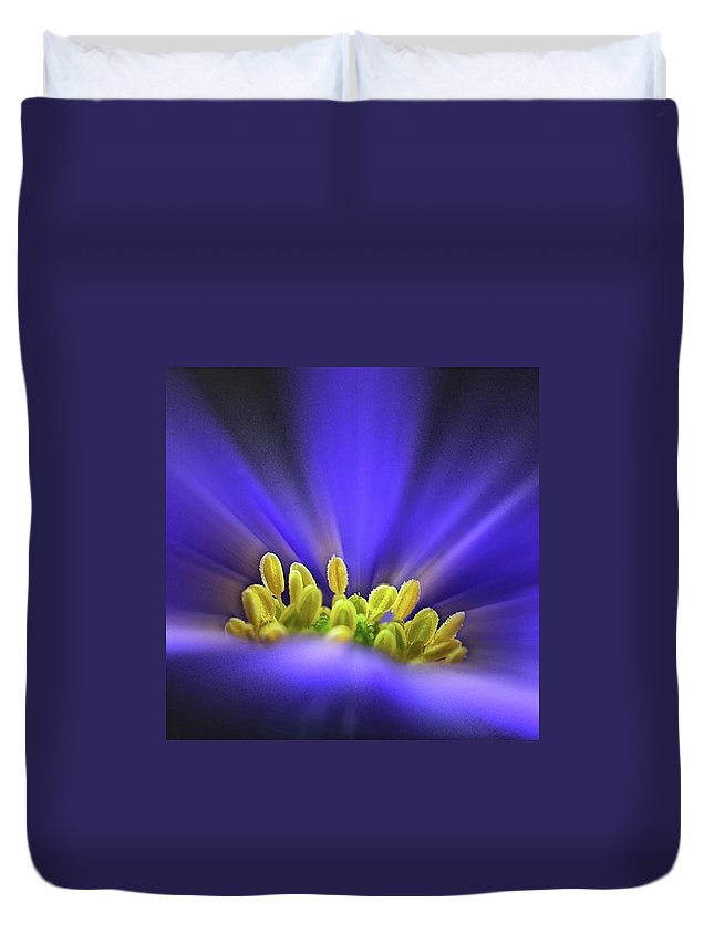 Beautiful Duvet Cover featuring the photograph blue Shades - An Anemone Blanda by John Edwards