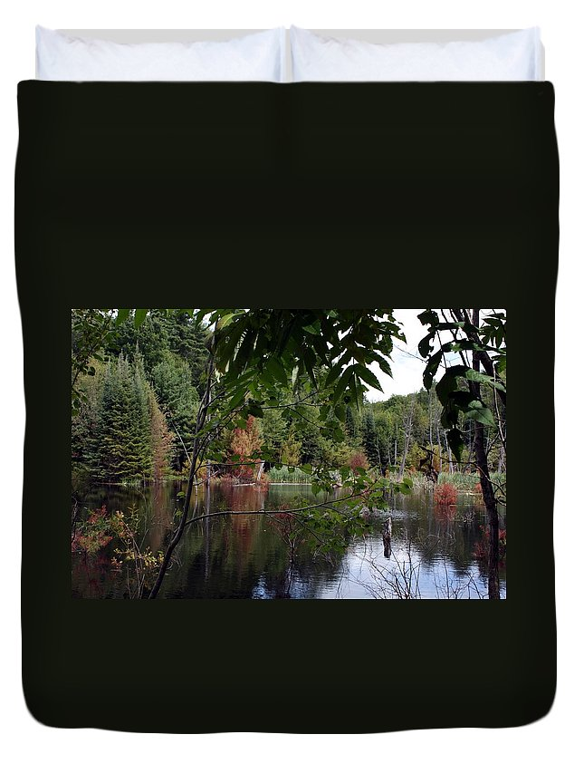 Landscape Duvet Cover featuring the photograph Blueberry Mountain by Pat Purdy