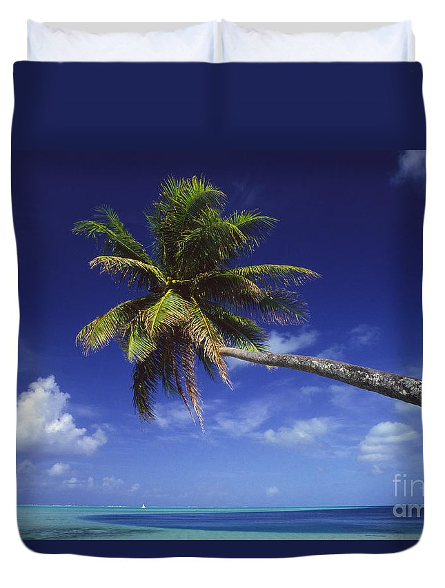 Beach Duvet Cover featuring the photograph Bora Bora, Palm Tree by Ron Dahlquist - Printscapes