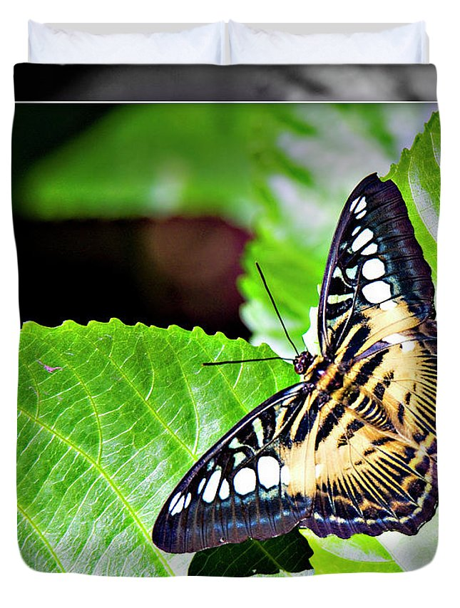 Butterfly Duvet Cover featuring the digital art Butterfly 13c by Walter Herrit