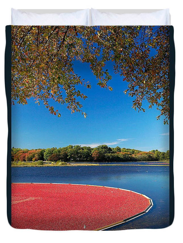 Cape Cod Duvet Cover featuring the photograph Cape Cod Cranberry Bog by Matt Suess