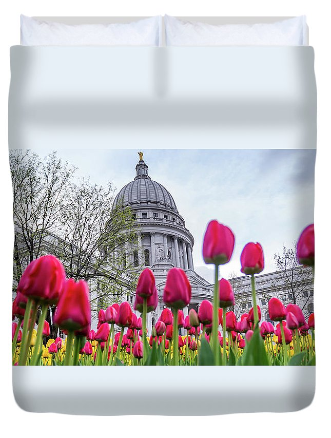 Tulips Duvet Cover featuring the photograph Capitol Tulips by Rockland Filmworks