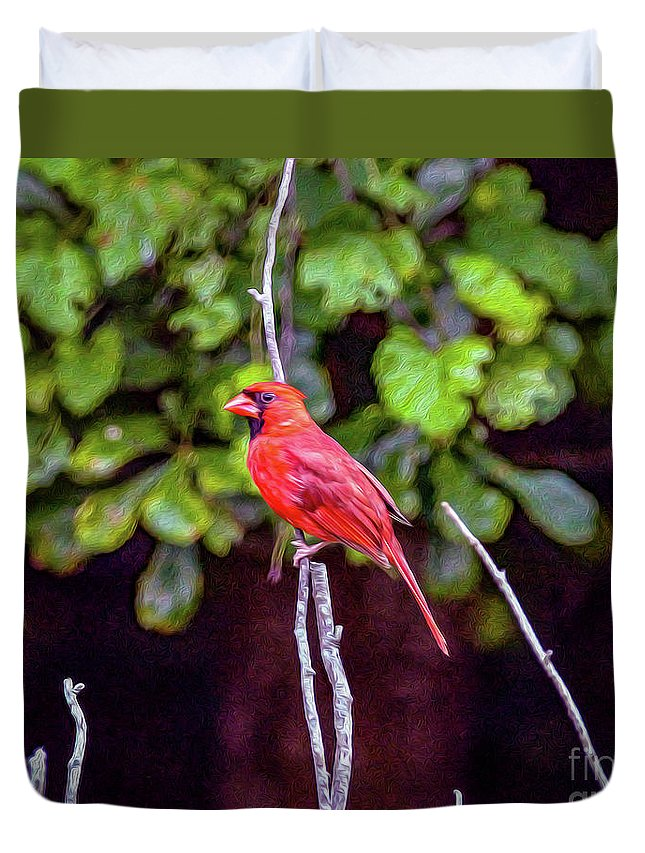 Nature Duvet Cover featuring the painting Cardinal Twigging A Break by Bill And Deb Hayes