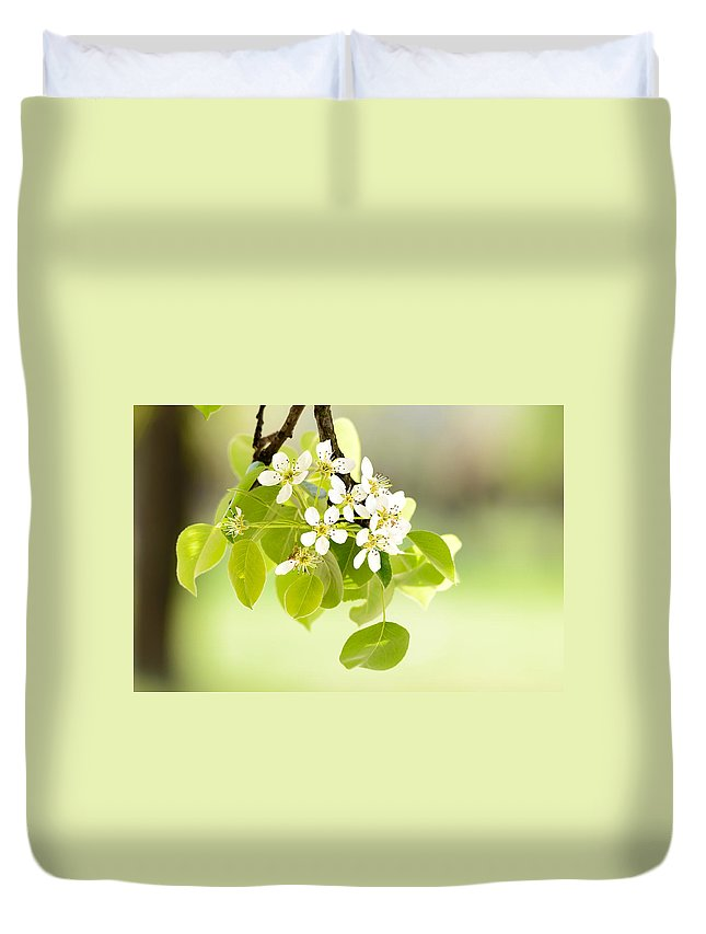 Beauty Duvet Cover featuring the photograph Cherry Flowers by Alain De Maximy
