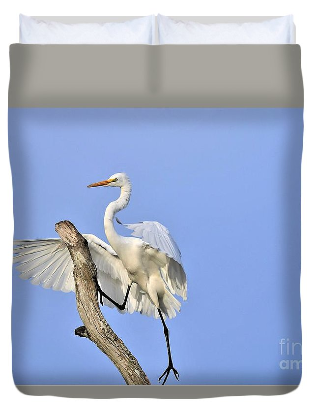 Great White Egret Duvet Cover featuring the photograph Climbing Up by Julie Adair
