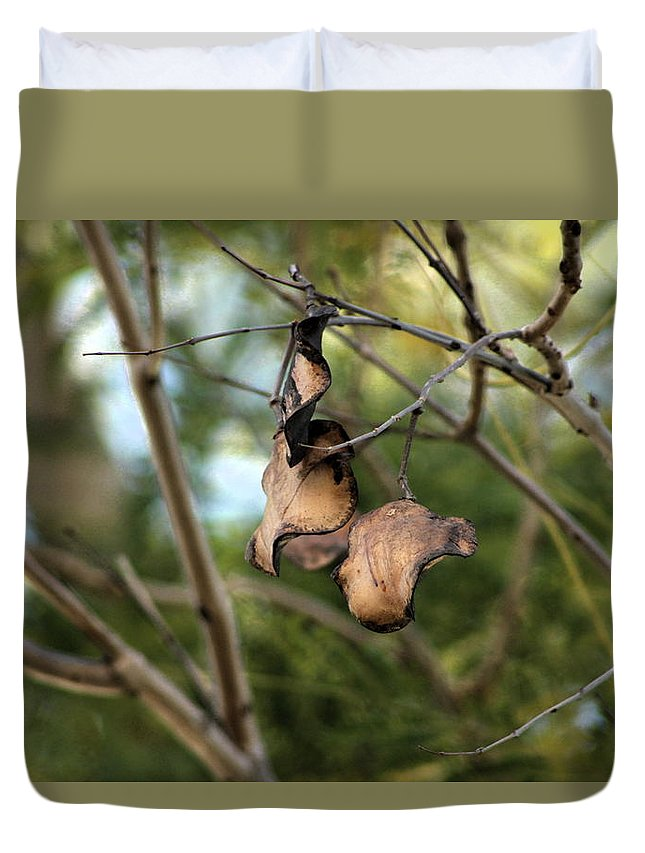 Tree Duvet Cover featuring the photograph Coffee Brown Pods by Colleen Cornelius