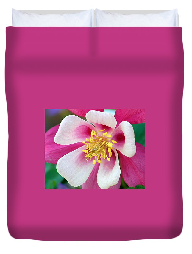 Columbine Duvet Cover featuring the photograph Columbine Flower 1 by Amy Fose