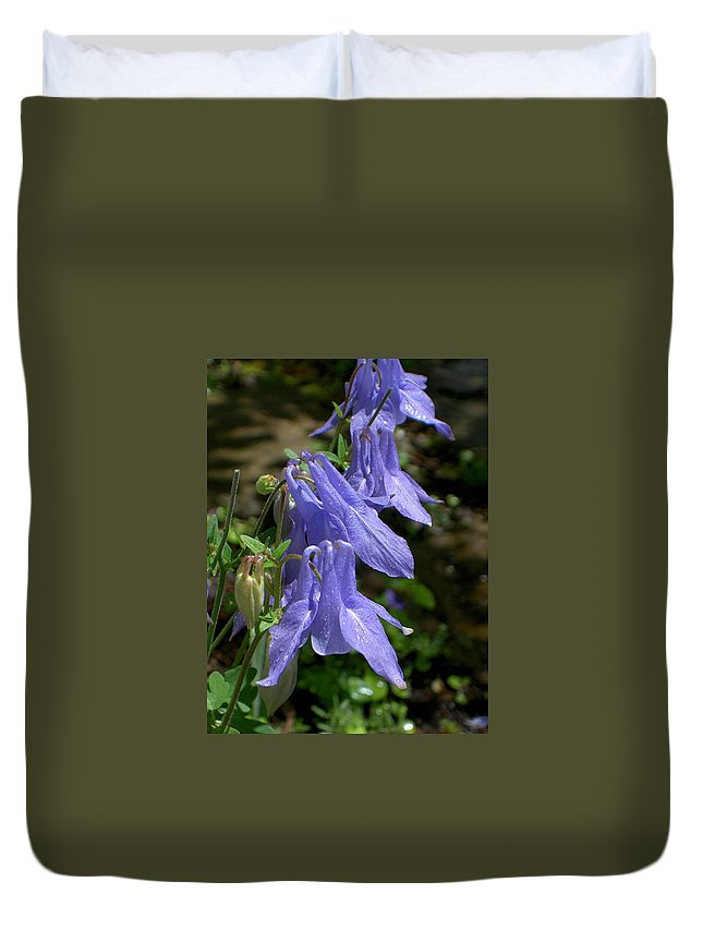Columbine Duvet Cover featuring the photograph Columbine Surprise by Carolyn Jacob
