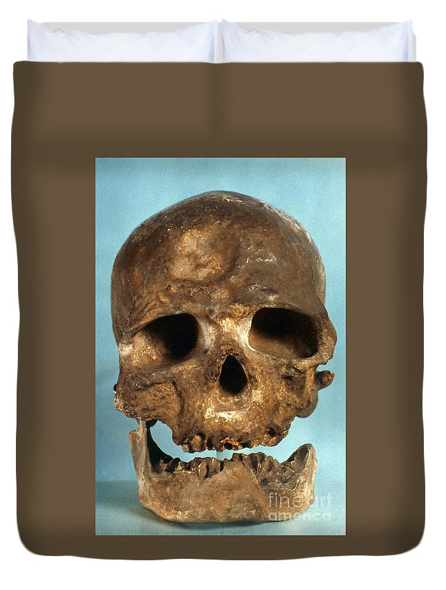 Artifact Duvet Cover featuring the photograph Cro-magnon Skull by Granger