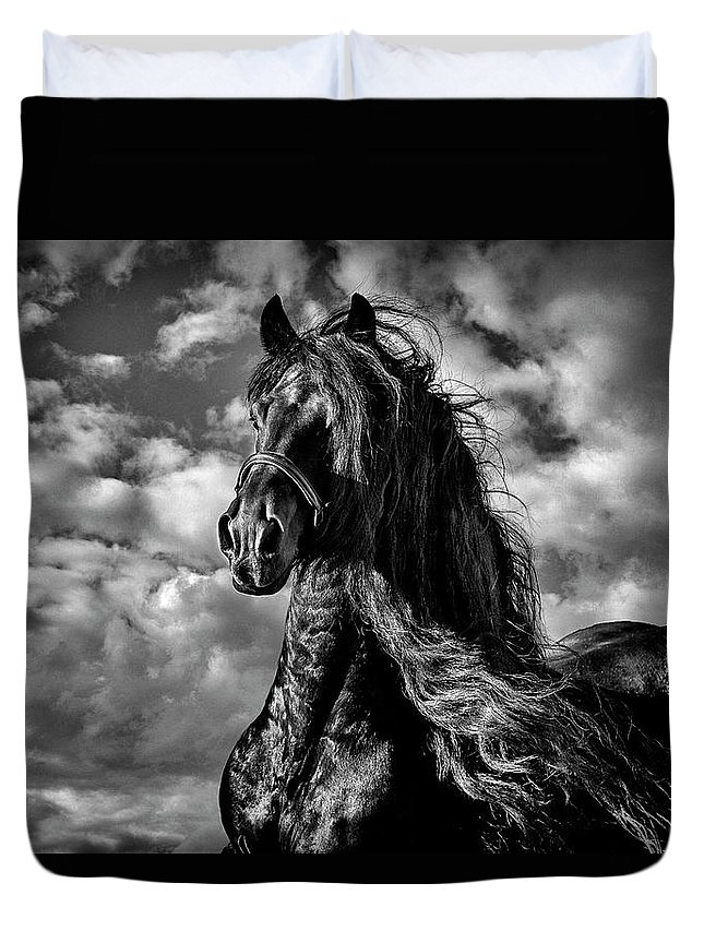 Dark Knight Duvet Cover featuring the photograph Dark Knight by Wes and Dotty Weber
